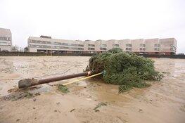 Stormschade in Huizen
