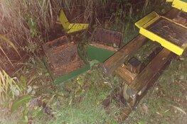 Wéér hebben vandalen het gemunt op Hilversumse bijenkasten