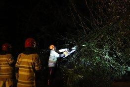 Boom blokkeert weg in Bussum