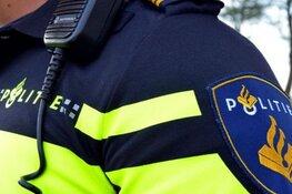 Politie zoekt getuigen vernieling bij school