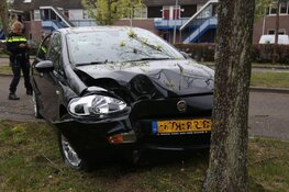 Automobilist aangehouden na botsing met boom