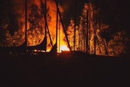 Fikse brand op eiland bij de Loosdrechtse plassen