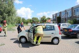 Boom valt op auto's in Kortenhoef