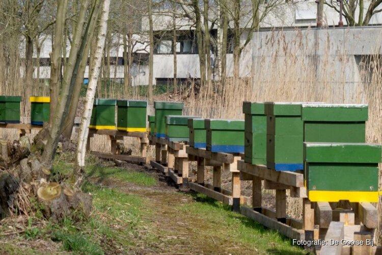 """Wéér hebben vandalen het gemunt op Hilversumse bijenkasten: """"De helft van de bijen is dood"""""""