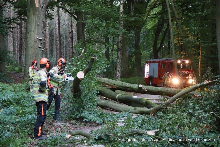 Grote boom blokkeert fietspad tussen Bussum en Huizen
