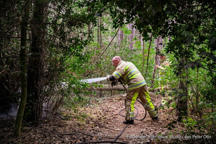 Brandweer snel ter plaatse bij bosbrandje