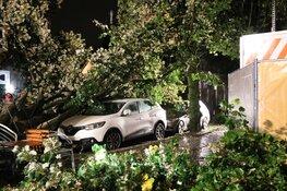 Grote boom belandt op meerdere auto's in Naarden